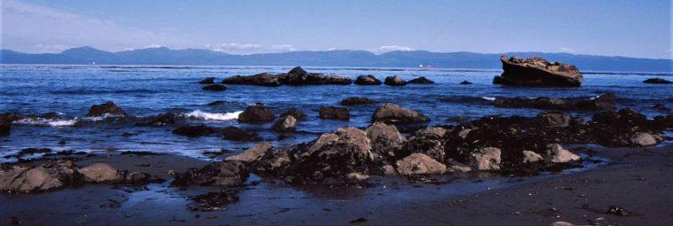 Nowe odkrycia na Channel Islands u wybrzeży Kalifornii