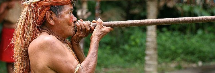 Kultury Indian Ameryki Południowej – wystawa