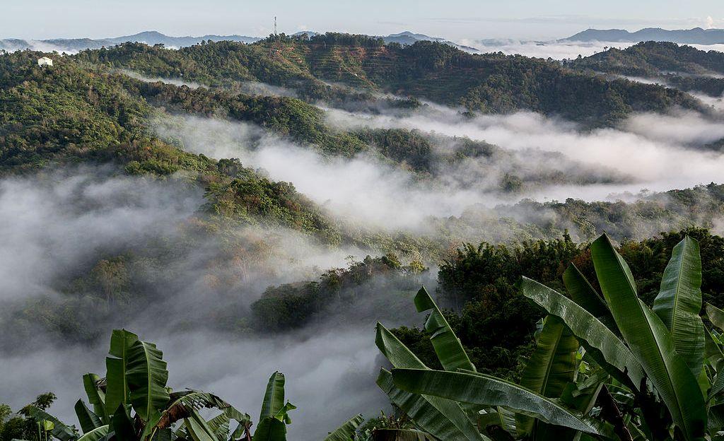 Crocker Range, Borneo © CEphoto, Uwe Aranas