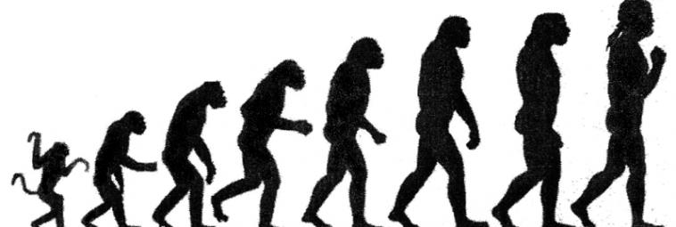Przystępnie o ewolucji człowieka