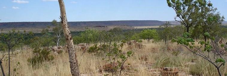 Nowe badania w Kimberley, Australia
