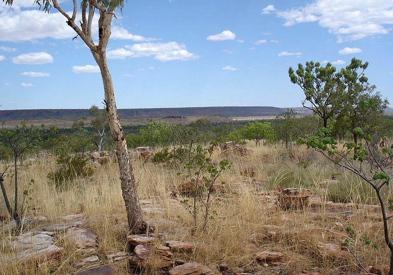 Region Kimberley w Zachodniej Australii. Fot. Tensaibuta. Creative Commons