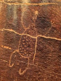 Ryt z Parku Narodowego Mutawintji. Fot. Peter Woodard. Creative Commons (domena publiczna)