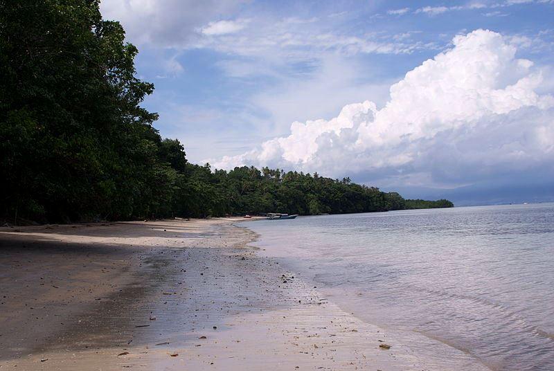 Sulawesi (Celebes). Fot. Sakurai Midori. Creative Commons
