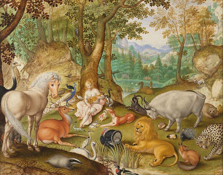 Orfeusz w otoczeniu zwierząt. Obraz namalowany przez Jacoba Hoefnagela 1573 1633 ze zbiorów The Morgan Library & Museum. Creative Commons