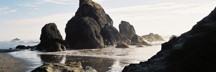 Dzikie plaże półwyspu Olympic