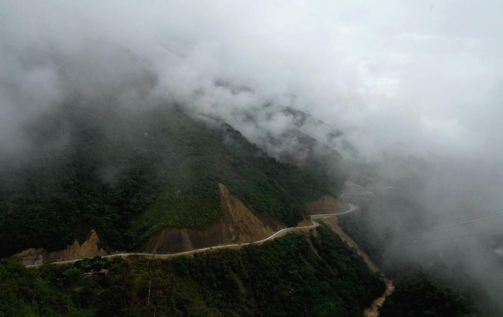 Droga przez ekwadorską dżunglę. Fot. Julia Tyszko.