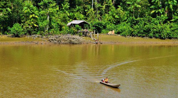 Amazonka w 4 dni, czyli rejs z Manaus do Belém