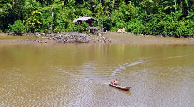 Pod niebem Amazonii