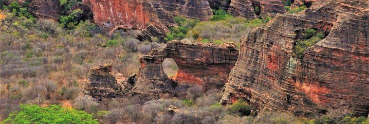 Prehistoria zagubiona pośród brazylijskiej caatingi