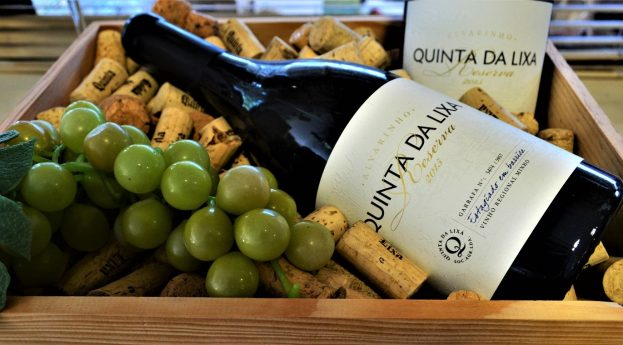 Smakując vinho verde, czyli wizyta w Quinta da Lixa