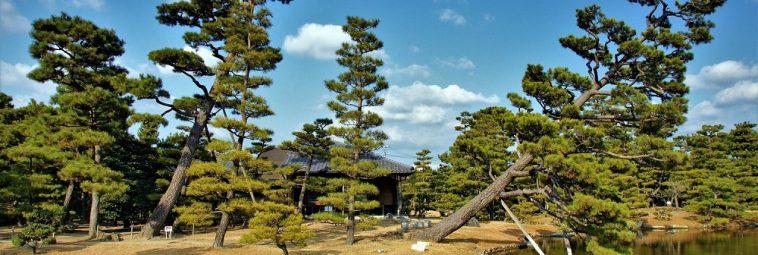 Japońskie ogrody – wystawa zdjęć
