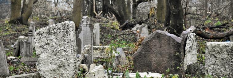 Kirkut o 500-letniej historii, czyli kilka słów o cmentarzu żydowskim w Lublinie