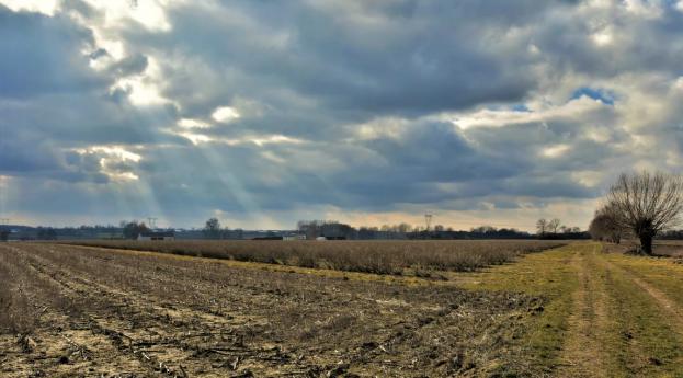 Grób kujawski z Rybna koło Sochaczewa – projekt wiosenne #archeopodróże przez #mazowszewneolicie