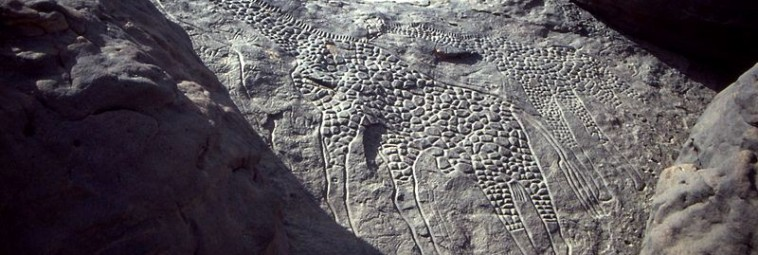 Polscy archeolodzy odkryli w Sudanie kolejne ryty naskalne
