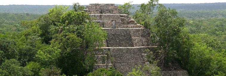 Nieznane miasto Majów odkryto w meksykańskiej dżungli [FILM]