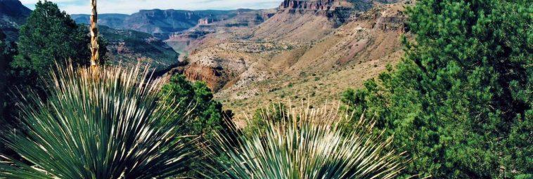 Arizona – krajobrazowe eldorado